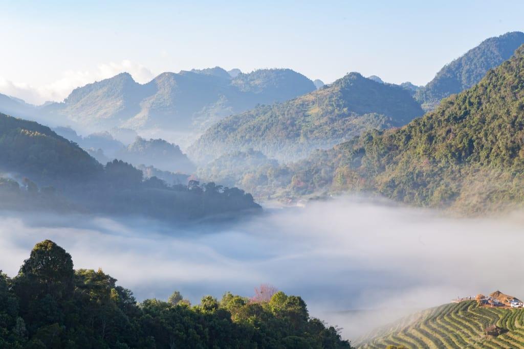 Morning Fog at Doi Ang Khang (Fang City, Thailand)